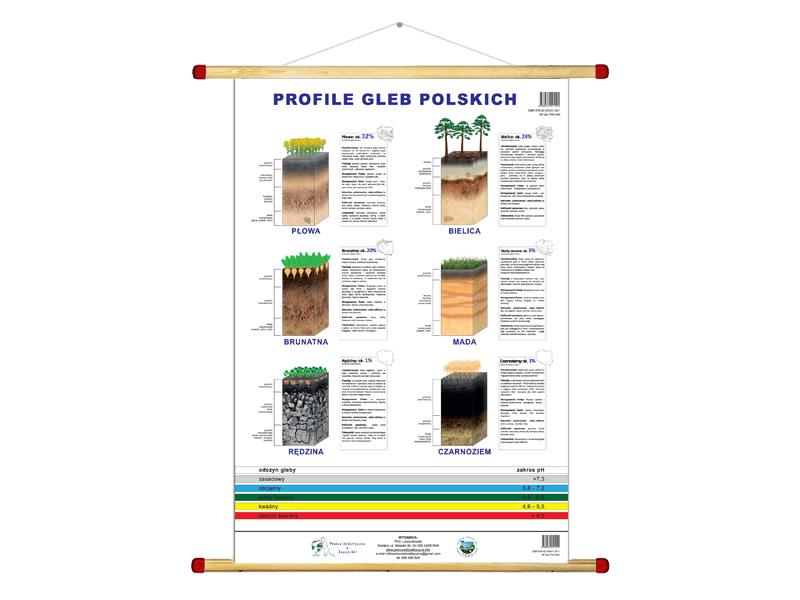 profile 6 najpopularniejszych gleb w Polsce - plansza